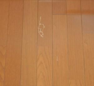 Flooring_060720141