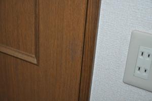 House_Interior_door_103020144